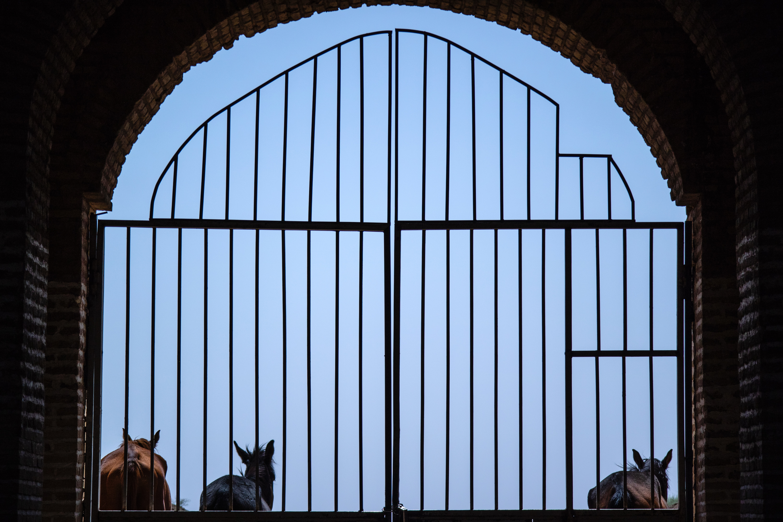 Trois des critères à considérer pour le choix d'un portail