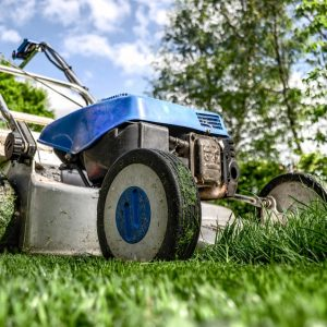 Une débroussailleuse adaptée au travaux de jardinage