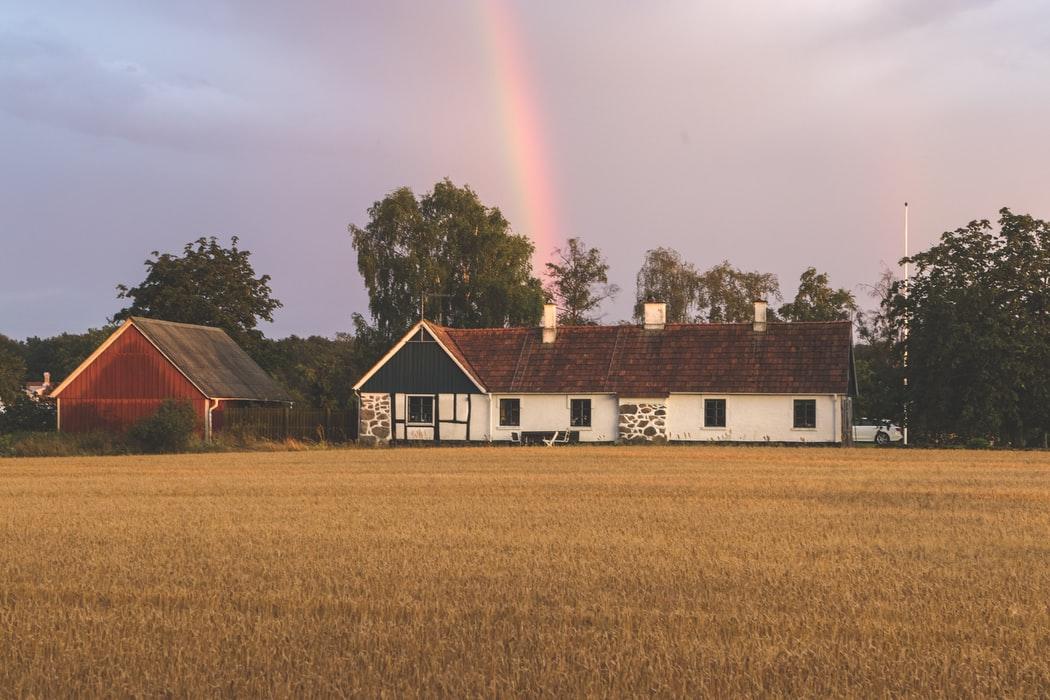 Les maisons en bois, vivre au plus près de la nature